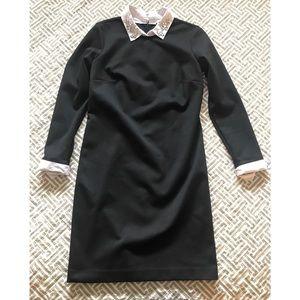 Ann Taylor Dresses - Ann Taylor | Shirtdress | XS